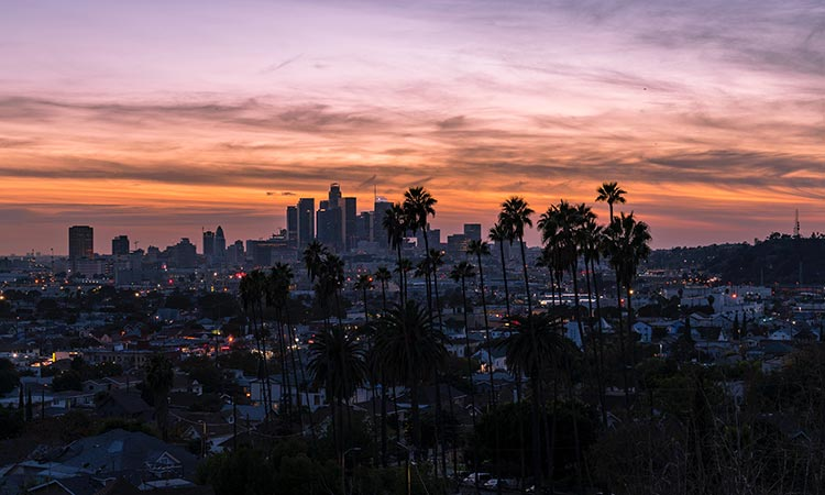 , How to Start a Business in Los Angeles